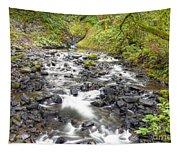 0106 Columbia River Gorge Near Bridal Veil Falls Tapestry
