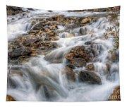 0190 Glacial Runoff 2 Tapestry