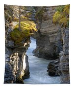 0191 Athabasca Canyon 2 Tapestry