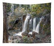 0204 Tangle Creek Falls 3 Tapestry