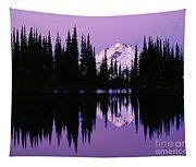 Glacier Peak  In Image Lake Tapestry