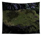 A Moss Covered Stone Inside The National Orchid Garden In Singapore Tapestry