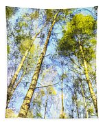 A Quiet Forest Tapestry