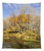 Alpine Loop Scenic Byway American Fork Canyon Utah Tapestry
