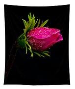 Anemone Flower On Black Tapestry