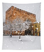 Arc Of Elvira While A Snowstorm Tapestry