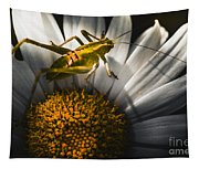 Australian Grasshopper On Flowers. Spring Concept Tapestry