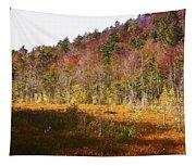 Autumn In The Adirondacks Tapestry