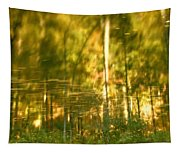 Autumn Reflections In Tennessee Tapestry