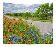 Backroad Beauty Tapestry