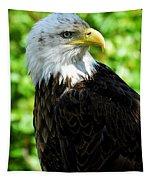 Bald Eagle - Alaska Tapestry