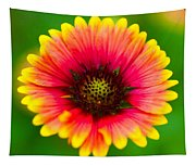 Beautiful Daisy Tapestry