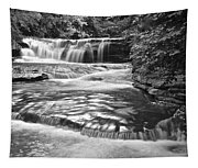 Black And White Cascade Tapestry