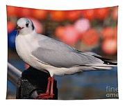 Black-headed Gull Tapestry