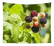 Black Raspberries 2 Tapestry