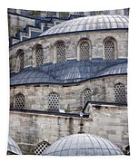 Blue Mosque 01 Tapestry
