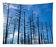 Burnt Pine Trees In A Forest, Grand Tapestry