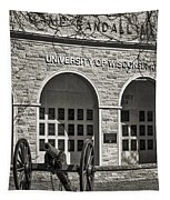 Camp Randall - Madison Tapestry