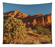 Cholla Cactus And Red Rocks At Sunrise Tapestry