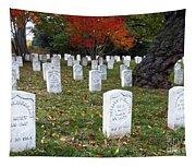 Civil War Dead At Arlington Tapestry