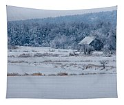 Cold Blue Snow Tapestry