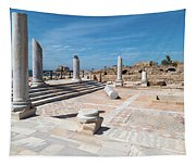 Columns In Archaeological Site Tapestry