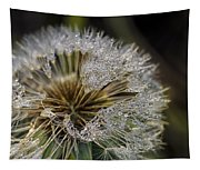 Dandelion With Water Drops Tapestry