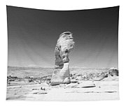 Delicate Arch 3 Tapestry