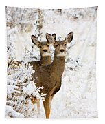 Doe Mule Deer In Snow Tapestry