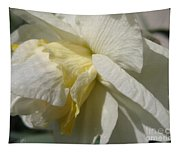 Double Daffodil Named White Lion Tapestry