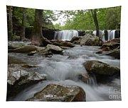 Downstream Tapestry