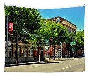 Downtown Pullman Washington Tapestry