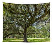 Dripping With Spanish Moss Tapestry