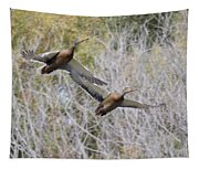 Duck Season? Tapestry