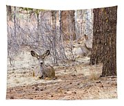 Easter Does Tapestry