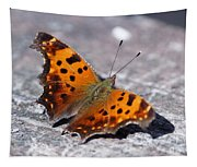 Eastern Comma Butterfly Tapestry