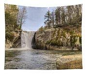 Elk Creek Falls 36 Tapestry
