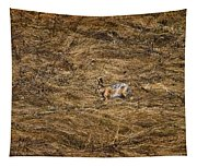 European Hare Tapestry