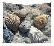 Fernandina Shells  Tapestry