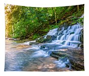 Forest Stream And Waterfall Tapestry