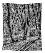 Forest View Tapestry