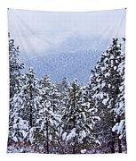 Fresh Snow Tapestry
