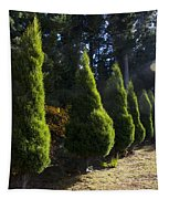 Funeral Cypress Trees Tapestry