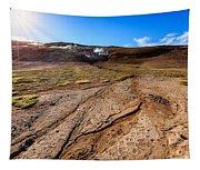 Geothermal Field Tapestry