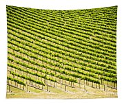 Grape Vines Tapestry