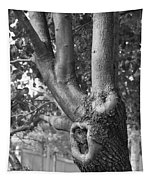 Growth On The Survivor Tree In Black And White Tapestry
