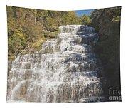 Hector Falls Tapestry