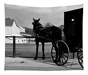Horse And Buggy And Farm Tapestry