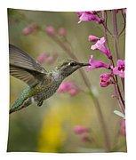 Hummingbird Heaven  Tapestry