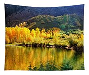 Lake Reflection In Fall  Tapestry